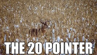 THE 20 POINTER: Giant Buck Harvested in the Snow