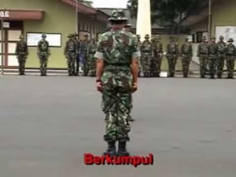 BERKUMPUL (baris berbaris PBB TNI)