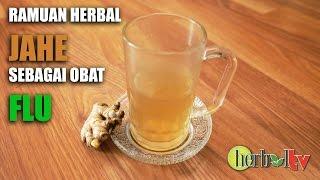 Download Lagu Ramuan Herbal Jahe Untuk Mengobati Flu / Traditional herbal medicine to treat influenza Gratis STAFABAND