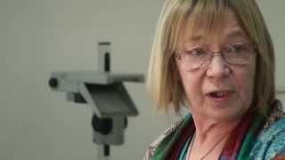 Dr. Christa Preissing: Bildungsreform und Situationsansatz (Vorlesung im Schloss)