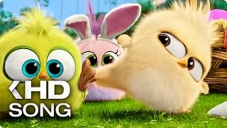 Easter Song by Baby Angry Birds (2016) Movie