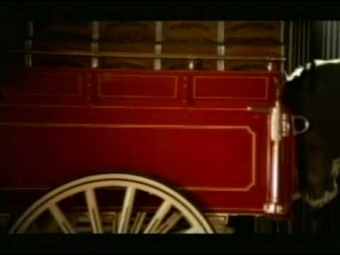 Budweiser Clydesdales family tv ad