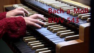 JS Bach Fuge a-Moll BWV 543 Orgel: Ann-Helena Schlüter live, Organ, Bach-Fugue a-Minor