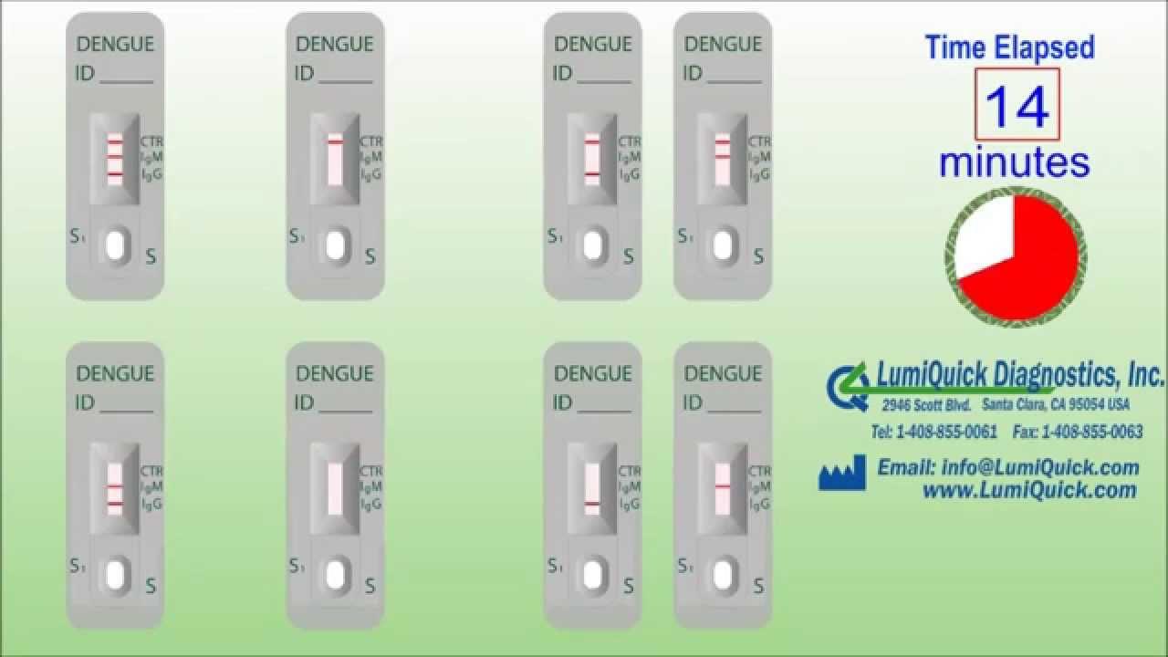 Test Dengue Fever Dengue Antiboy Igg / Igm Test