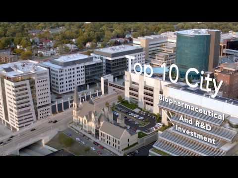 Downtown Grand Rapids: Art of the Collaborative City