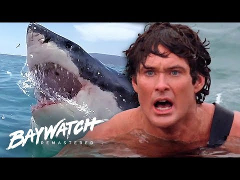 Download Great White Shark ATTACK On Baywatch! Will Mitch Save Jill?! Baywatch Remastered Mp4 baru
