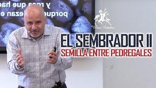 Predicas Cristianas | El Sembrador II - Semilla entre Pedregales | Pastor Caballero