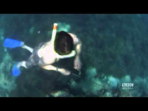 Spear-Fishing in Fiji: NO KITCHEN REQUIRED Ep 4 Sneak Peek