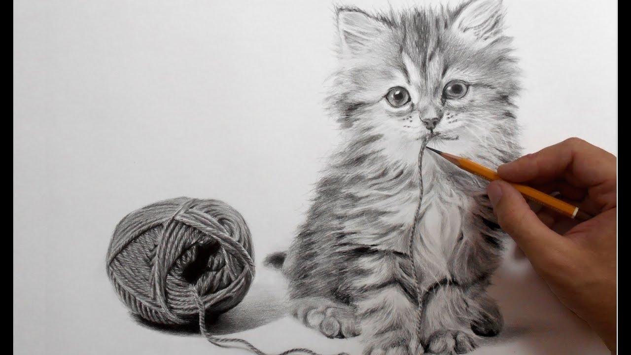 Нарисованы коты простыми карандашами