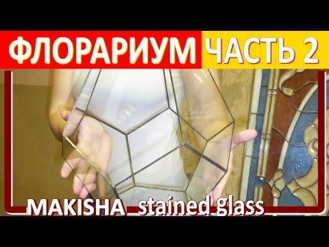 Флорариум своими руками – мастер класс и фото: ПРОФЕССИОНАЛ советует