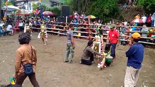 SUKET TEKI - Jathilan Yogyakarta Ngesti Turonggo Mudho