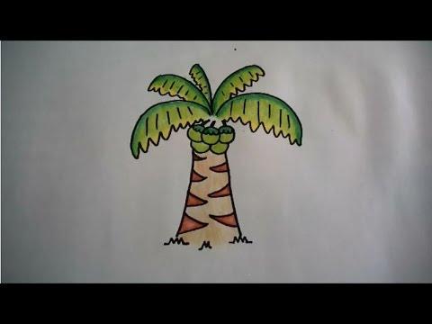 วาดรูป ต้นมะพร้าว สอนวาดรูปการ์ตูนน่ารักง่ายๆ การ์ตูนระบายสี How To Draw Coconut Tree Cartoon