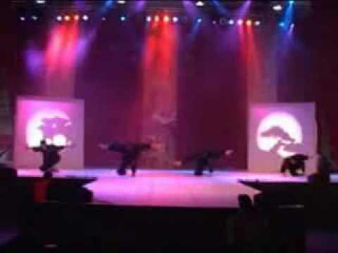 Team Ryouko Promo Video