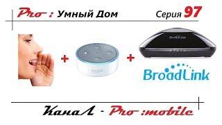 Amazon Alexa and Broadlink. Подключение и настройка. Умный дом. Серия 97