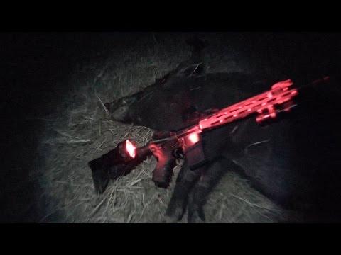 Big Sow, Hog Hunting With Sniper Hog Lights