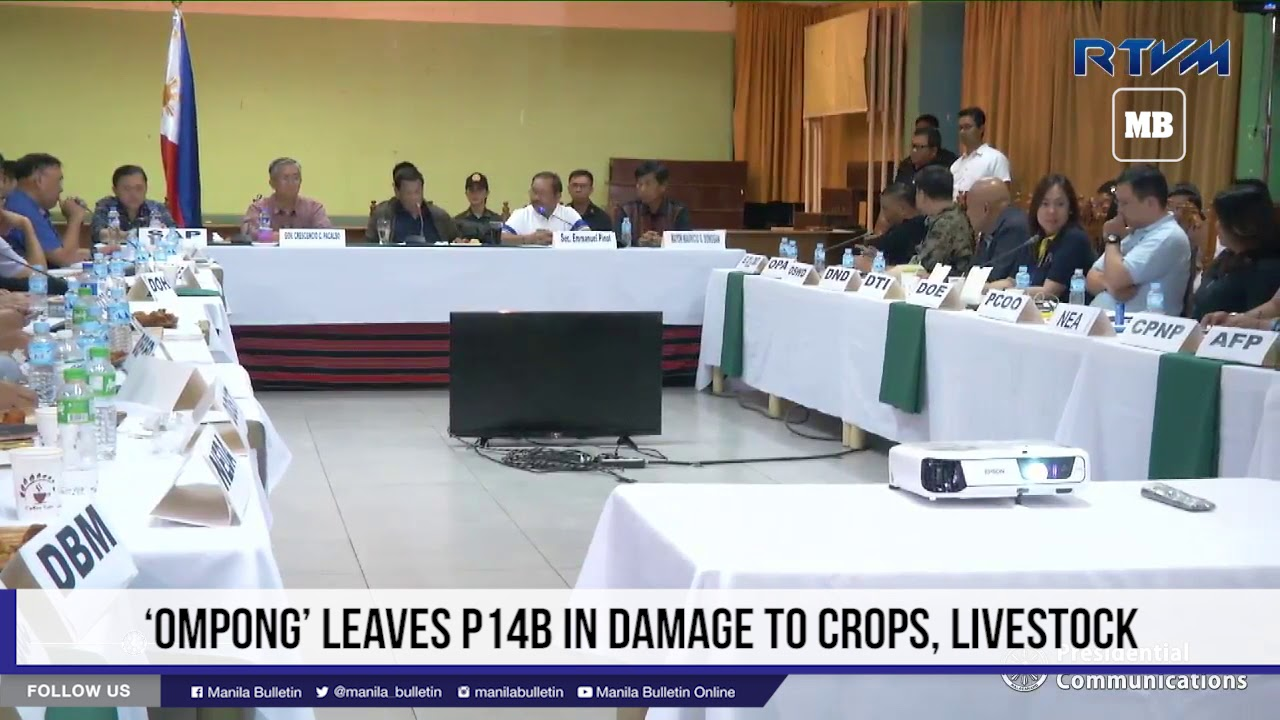 'Ompong' leaves P14B in damage to crops, livestock