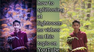 how to ????splittoning at lightroom part-1by???? RDX CREATION????