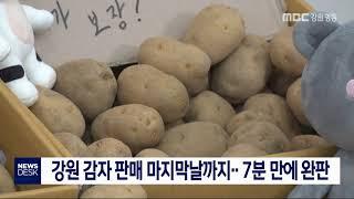 강원 감자 판매 마지막날까지...7분 만에 완판