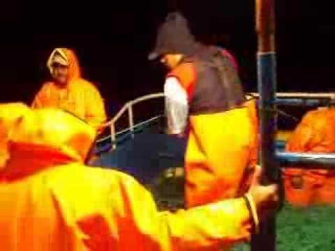 pesca del perico en chimbote