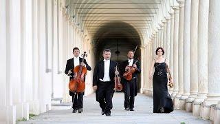 Christina Perri A Thousand Years Gli Archimisti String Quartet
