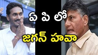 2019 AP Elections Results Update | AP Elections | Jagan | Chandra Babu