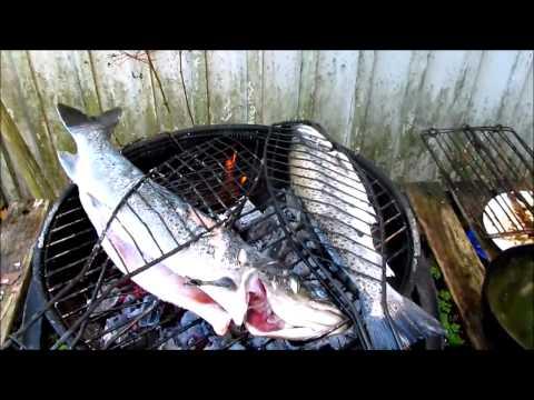 Fishing report - DENIZ ALASI MANGALI  30.9.2012 Video