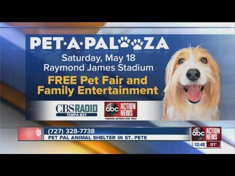 PTB: May 18 Pet A  Palooza