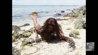 Sirena Real Encontrada en Mexico