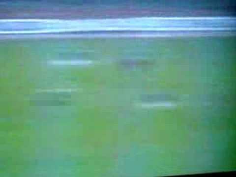 jugpa-01-1977-huanito-flaa-u-glavu.html