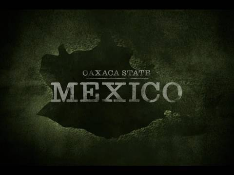 Mexico: A Solution From Within - starvedforattention.org