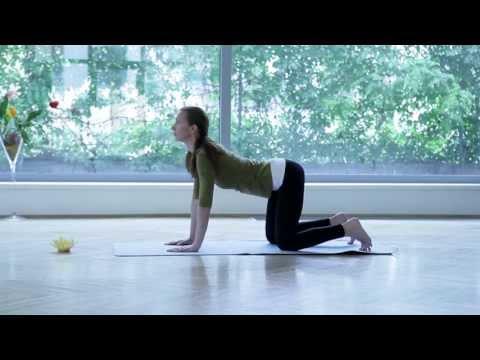 Joga: cviky na chrbticu (20 min.!) - Joga pre zdravie