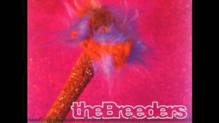Watch Breeders Hoverin video