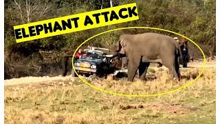 Elephant Attack Tourist Gypsy - Corbett National Park