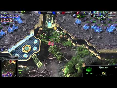 PvZ Mana vs SortOf -g2- Starcraft 2 HD polski komentarz Heart of the Swarm