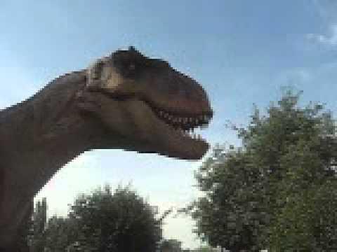Ruchomy T. Rex w Nowej Soli!