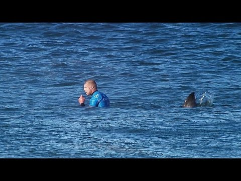 Surfer Mick Fanning attacked by shark during competition