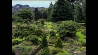 Watch Brad Paisley In The Garden video
