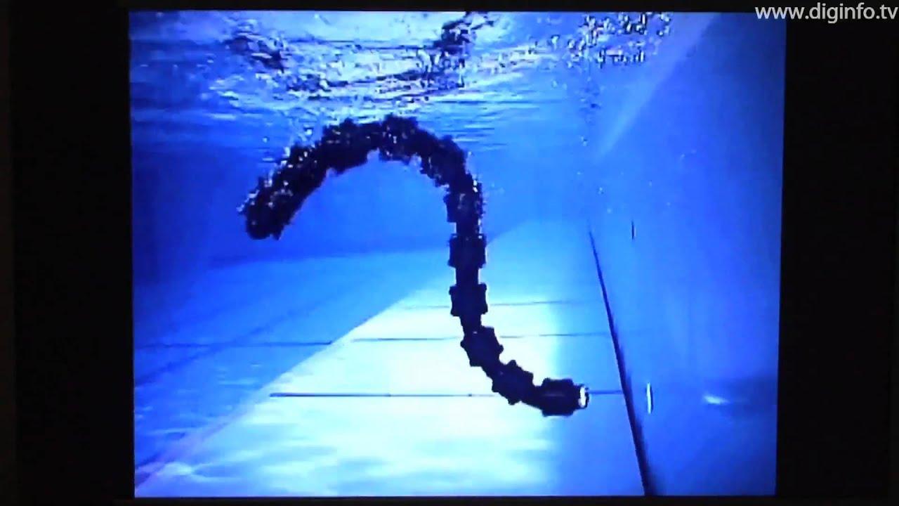 Robot Snake Game Snake Robot on Land Water