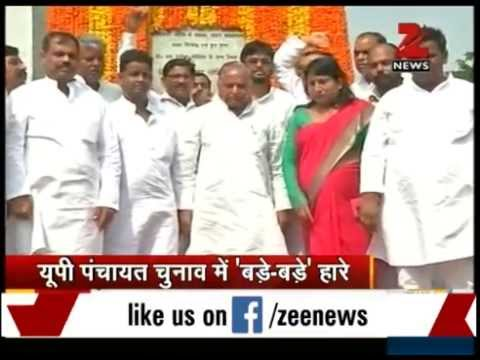 UP panchayat poll results: Big jolt to SP heavyweights