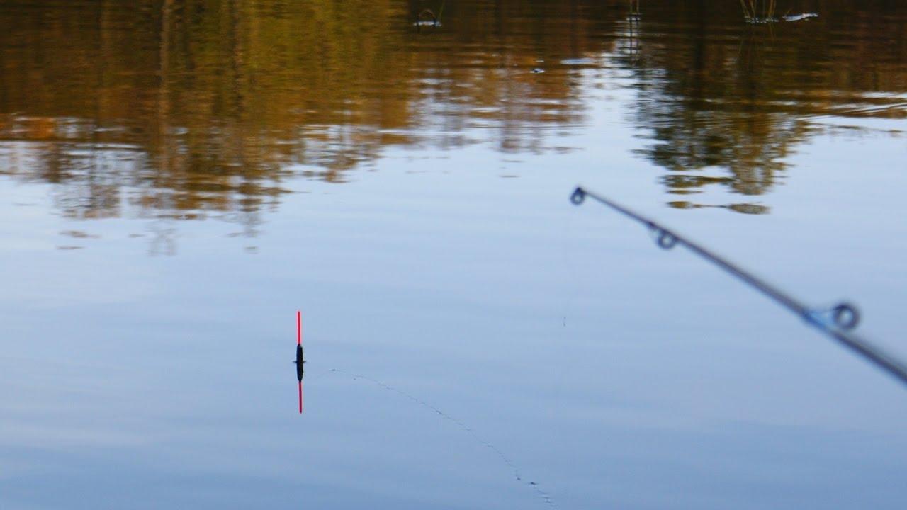 паук для ловля карася на поплавочную удочку видео