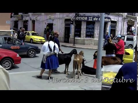 Cuenca Ecuador.  Mercado 9 de Octubere