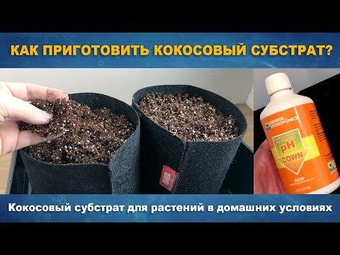 КАК ПРИГОТОВИТЬ КОКОСОВЫЙ СУБСТРАТ - Кокосовый субстрат в домашних условиях