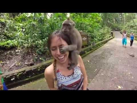 Southeast Asia GoPro: Bali & Thailand