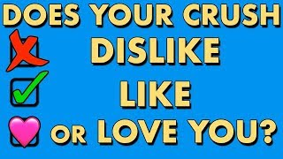 DOES YOUR CRUSH DISLIKE, LIKE OR LOVE YOU? Love Personality Test   Mister Test