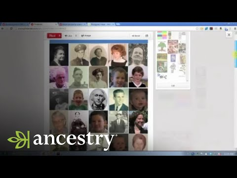 Sharing Family History With the Genealogically Challenged
