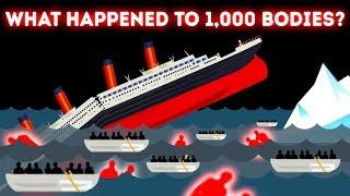 The Mystery of the Disappeared Bodies of the Titanic