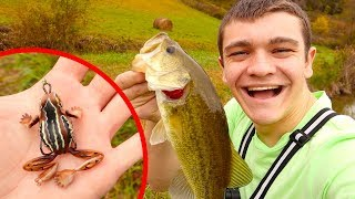 LARGEMOUTH BASS on MINI FROG!!! 🐸