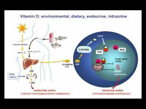 Nutrient mechanisms in infection: Vitamin D-deficiency by Martin Hewison