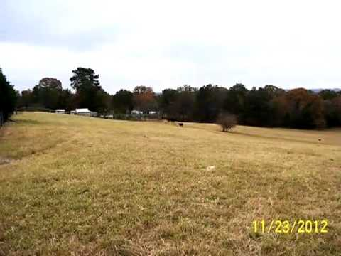 Homes for Sale - 531 Bizzell Rd - Frankston, TX 75763 - George McIntyre