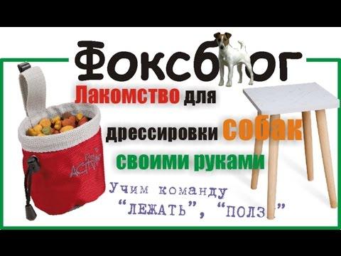 """Лакомство для дрессировки собак своими руками + команда """"Лежать"""", """"Ползи"""""""